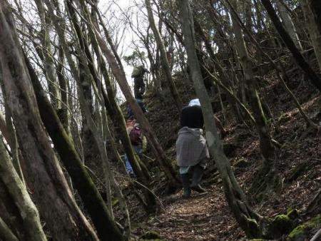 カラ迫山開き 141
