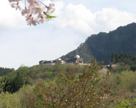 カラ迫山開き 247