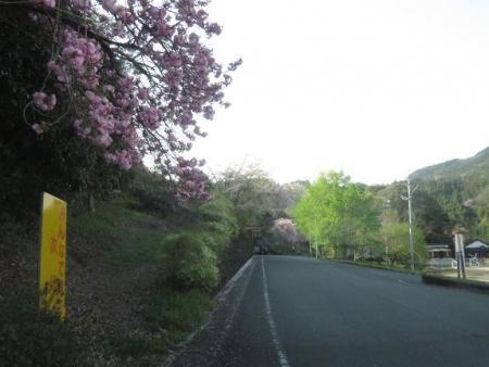 カラ迫山開き 274