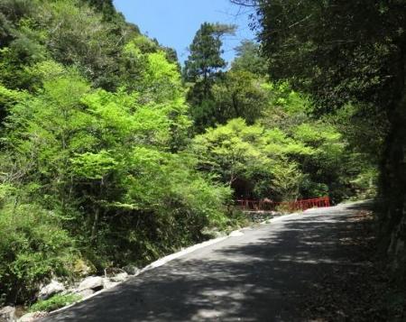 星野不動の滝 071