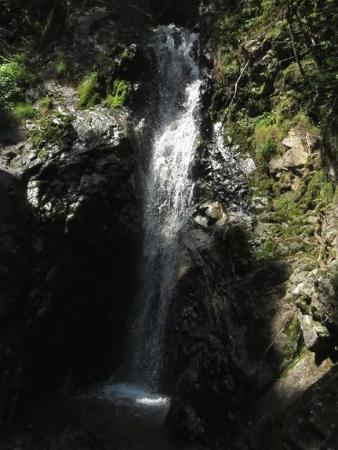 その2不動の滝 078