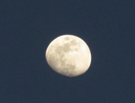 月その2 004