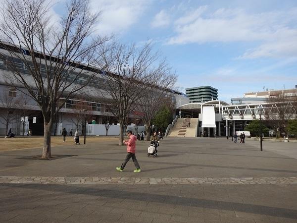 20170301大堀川 (2)