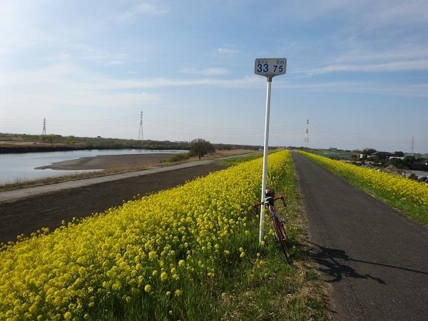 20170402江戸川 (2)