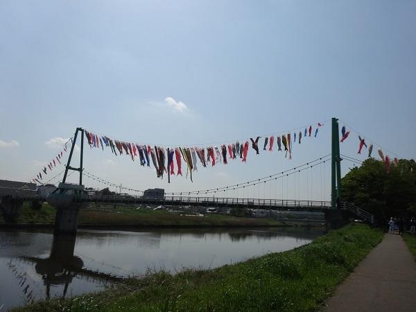 20170429高滝湖方面 (2)