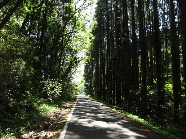 20170429高滝湖方面 (5)