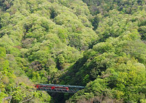 新緑の出山鉄橋