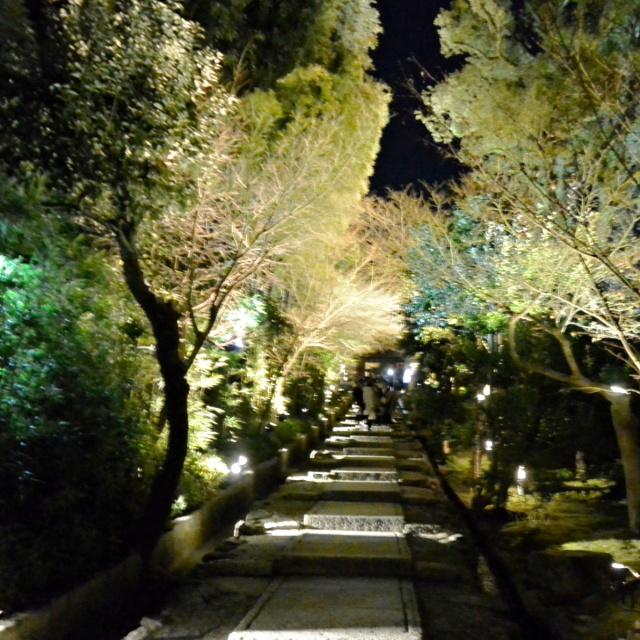 高台寺周辺 (6)