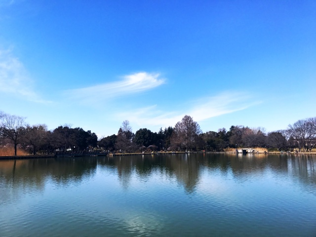 水城公園 (7)