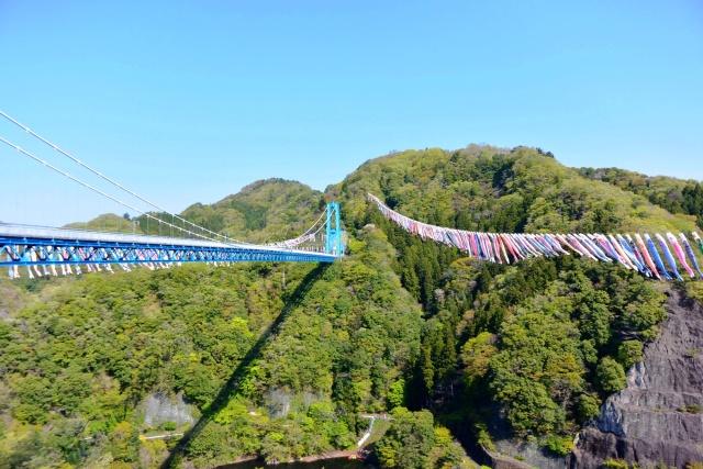 竜神大吊橋 (4)