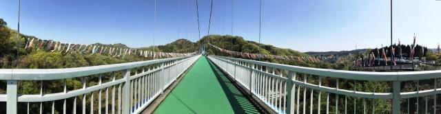 竜神大吊橋 (8)
