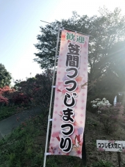 笠間つつじまつり (1)