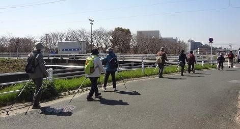 西田川沿い