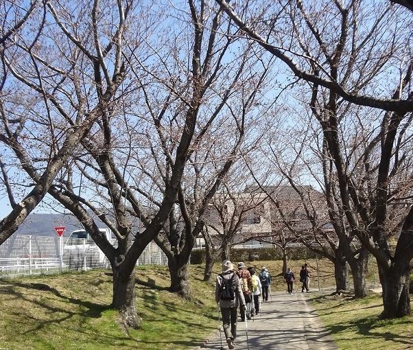 西田川公園4
