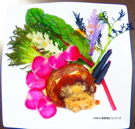 彩野菜とハンバーグ