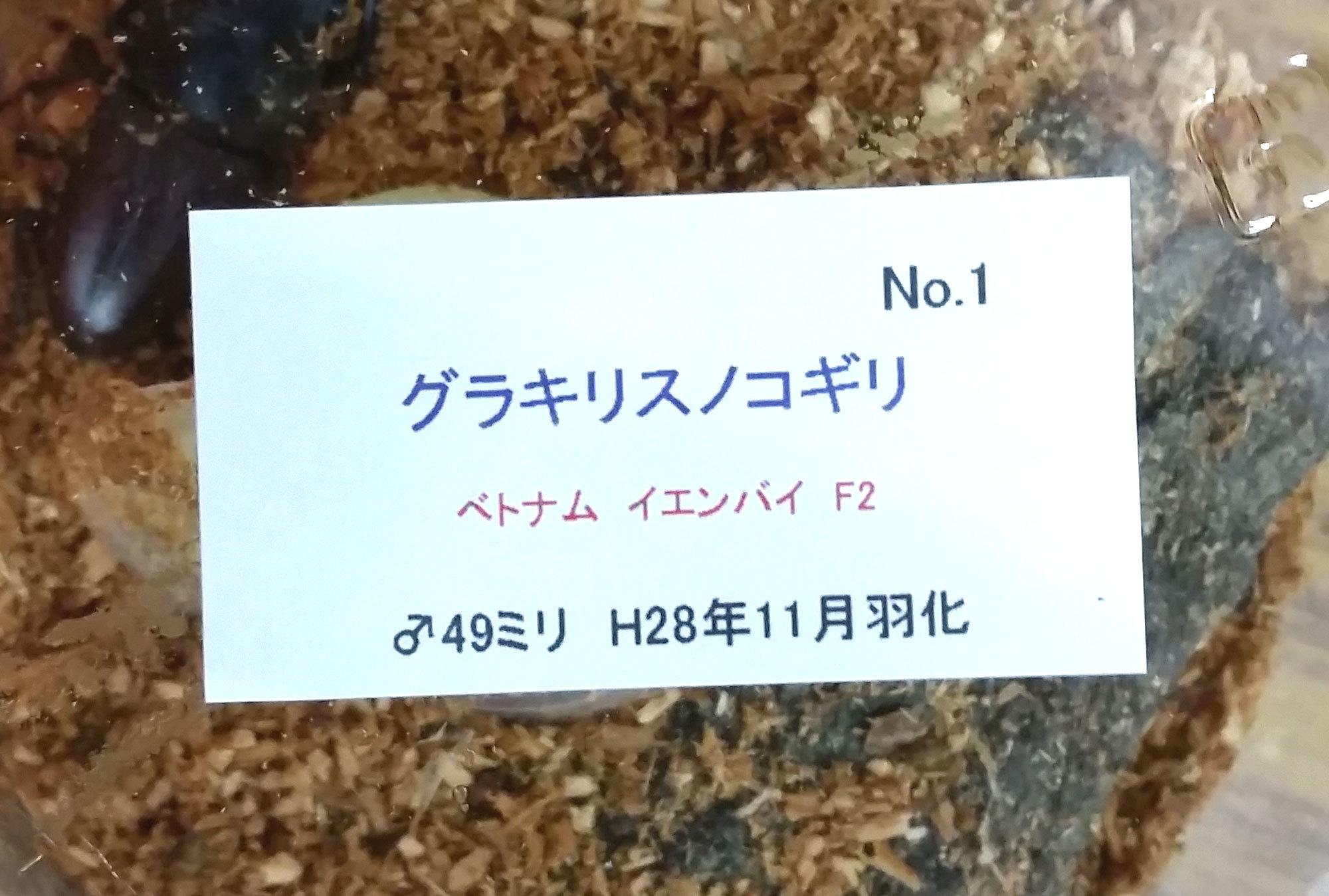 20170414_04.jpg