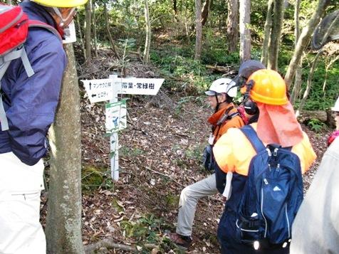 H28安全講習5・森林浴