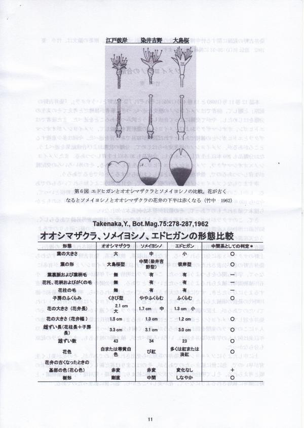 takenaka3_convert_20170325112112.jpg