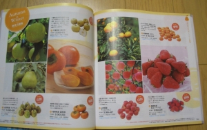 ヒューリック果物