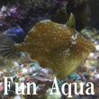 2017_Fun Aqua_logo