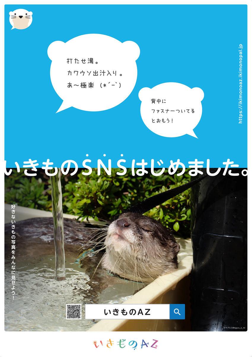 2017_いきものAZ&いきも~る_01