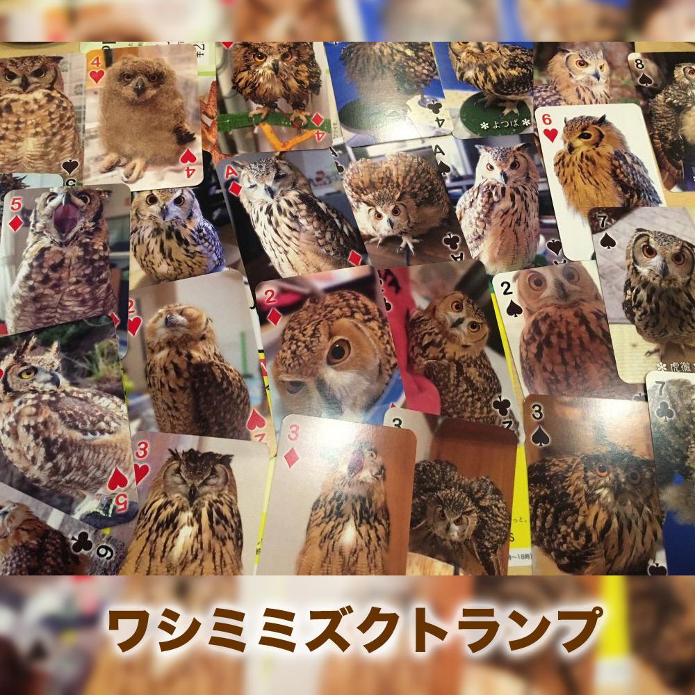 2017_ふくろうキャラバン_01