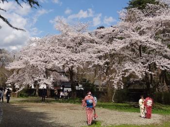 KAKUNODATE20170427002.jpg