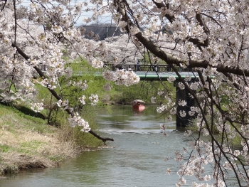 Ushijima2017042303.jpg