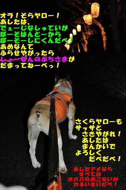 DSC_0009_20170411091702204.jpg