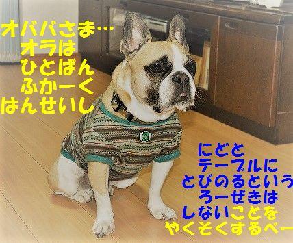 DSC_0419_201702220925198fe.jpg