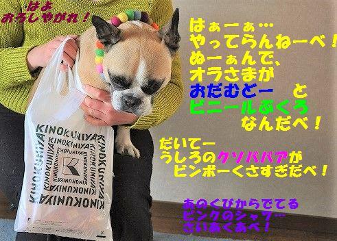 DSC_0509_2017022814531194f.jpg
