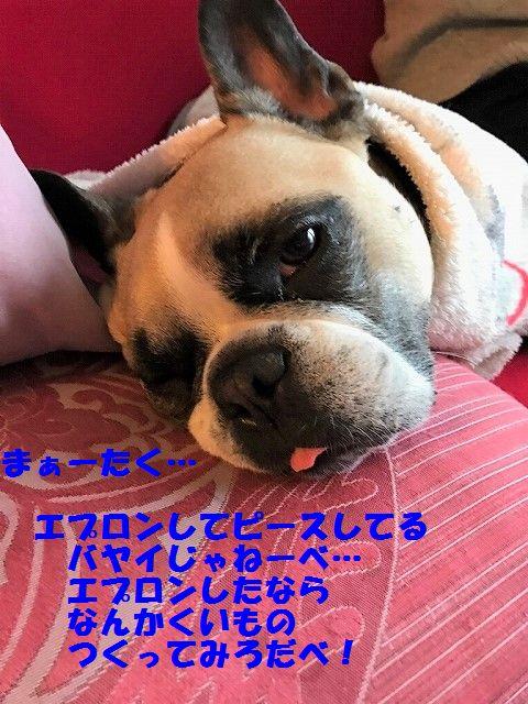 IMG_1450_20170321101428ba6.jpg