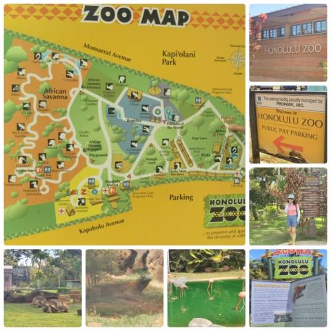平成29年4月12日動物園1