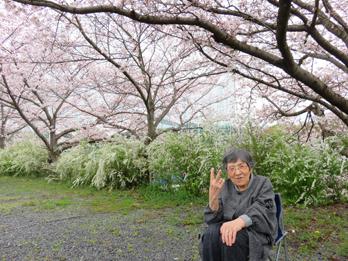 花見の写真6