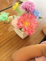 6月の花育A