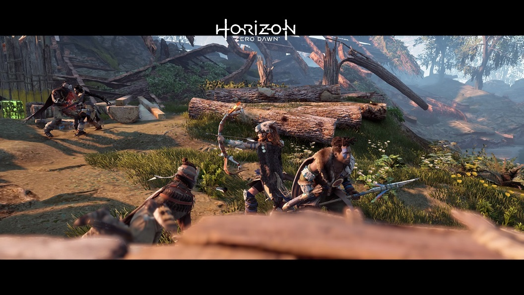 Horizon Zero Dawn™_20170309184932