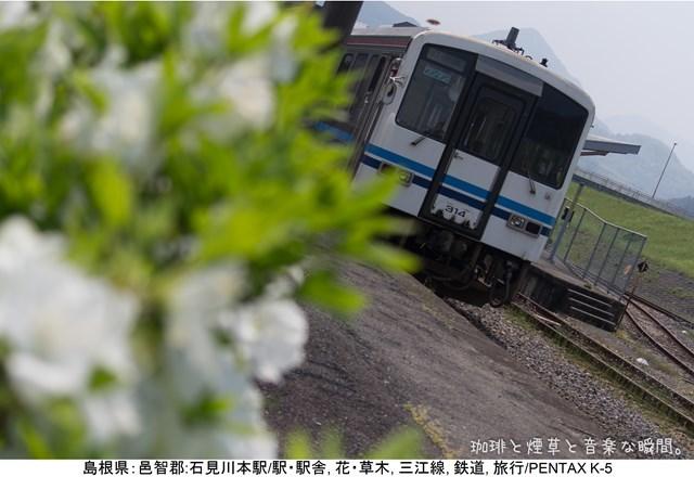 m-GW横-08