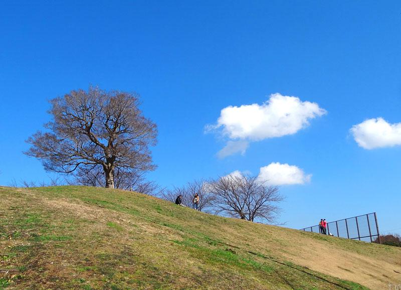 170225榎の丘1