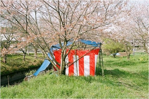 1-シグネット35 杵振り祭り 2017-4 フジ100-19-57200019_R