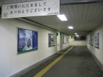 shinyubari05.jpg