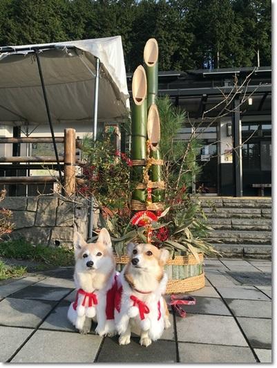 クリスマス2016-4