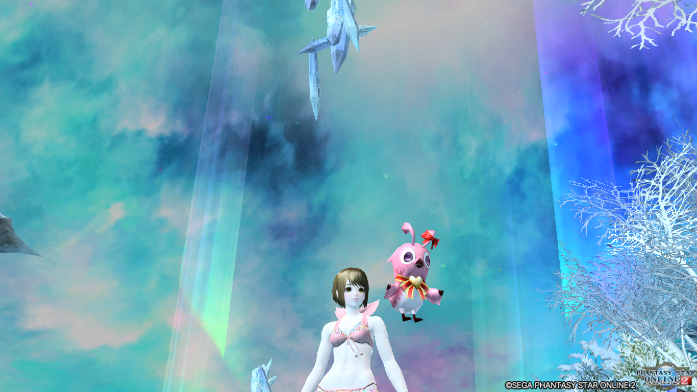 pso20170221_002627_013.png