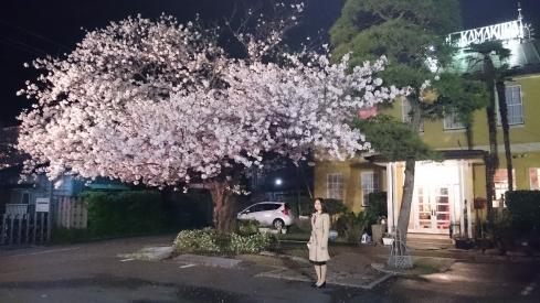 20170412Hotel Kamakura