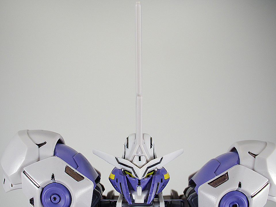 HG キマリスヴィダール8
