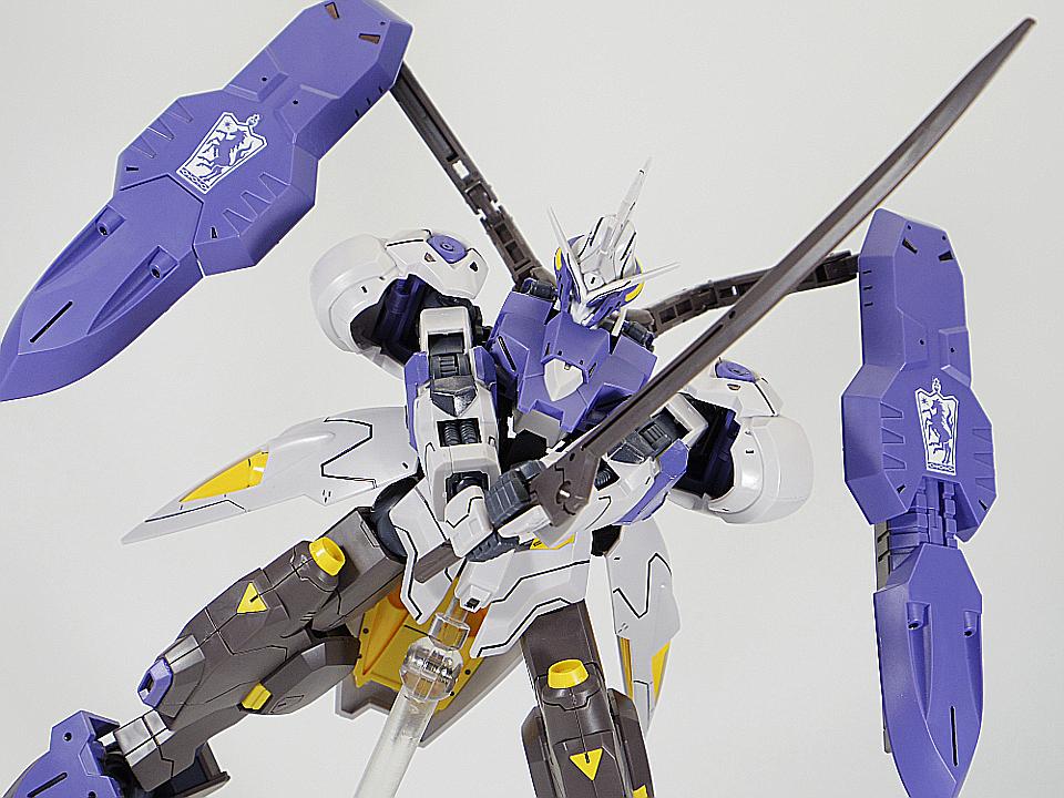 HG キマリスヴィダール82