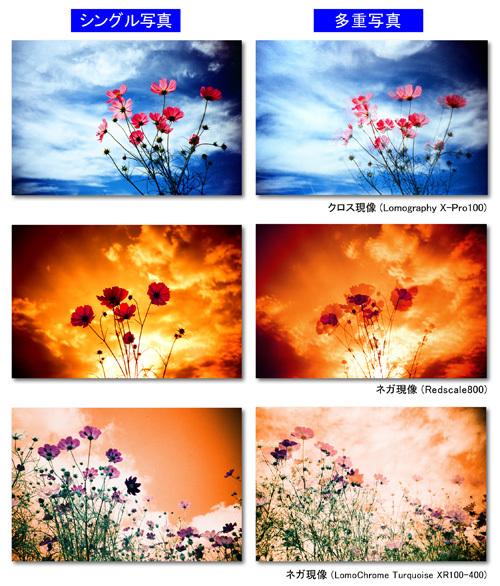 choibura01-3.jpg