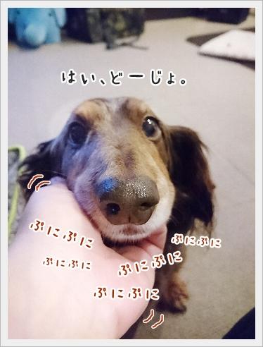 fc2_2017-03-29_02.jpg