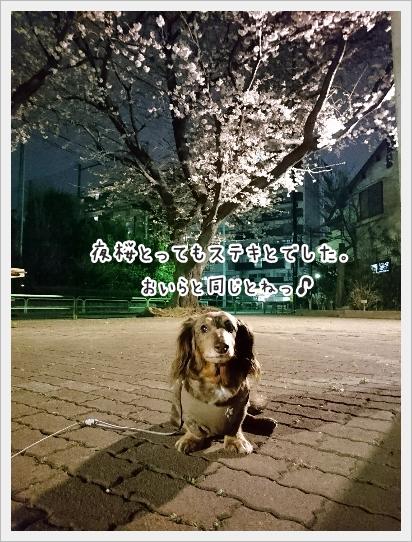 fc2_2017-04-07_02.jpg