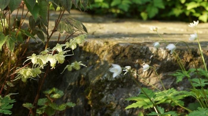 watermarked-DSC06076a.jpg