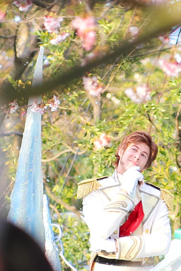 桜フロファン2